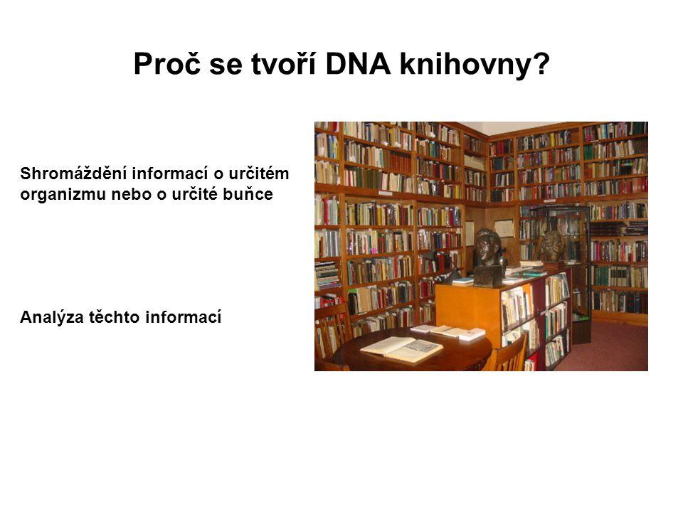 Proč se tvoří DNA knihovny? Shromáždění informací o určitém organizmu nebo o určité buňce Analýza těchto informací