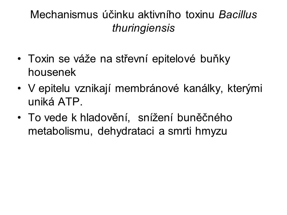 FCh 25.10.2010