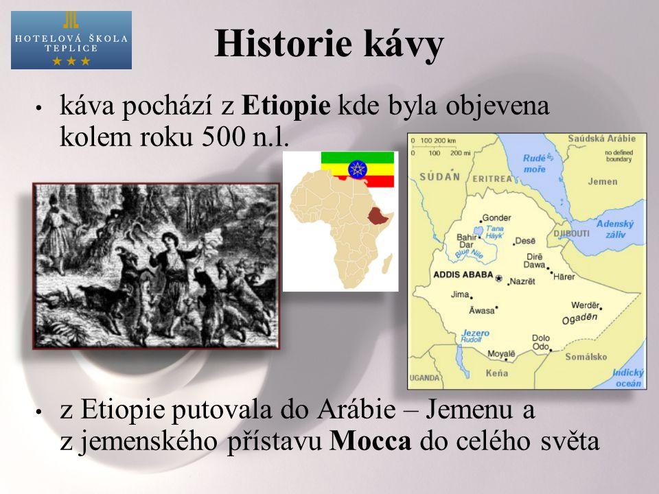 Historie kávy káva pochází z Etiopie kde byla objevena kolem roku 500 n.l. z Etiopie putovala do Arábie – Jemenu a z jemenského přístavu Mocca do celé