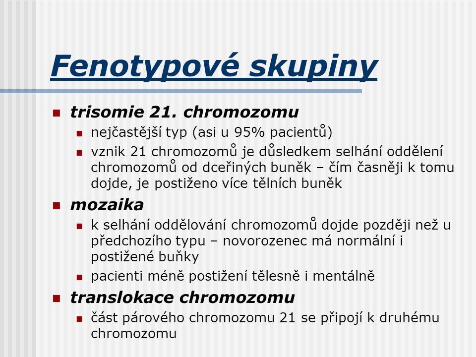 Fenotypové skupiny trisomie 21. chromozomu nejčastější typ (asi u 95% pacientů) vznik 21 chromozomů je důsledkem selhání oddělení chromozomů od dceřin