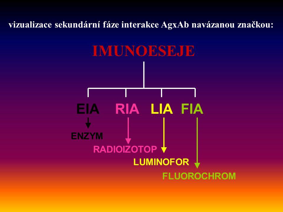 RIA -kompetitvní heterogenní metoda -oddělení nukleární medicíny -detekce reakce Ag-Ab pomocí radioaktivního izotopu jako značky navázané na jednu ze složek reakce, nejčastěji 125 I -měří se intenzita radioaktivního zářiče – není třeba přidávat substrát -vyšetřování hladin různých hormonů a jejich metabolitů, vitamínů a jejich metabolitů, specifického IgE, některých autoprotilátek – např.