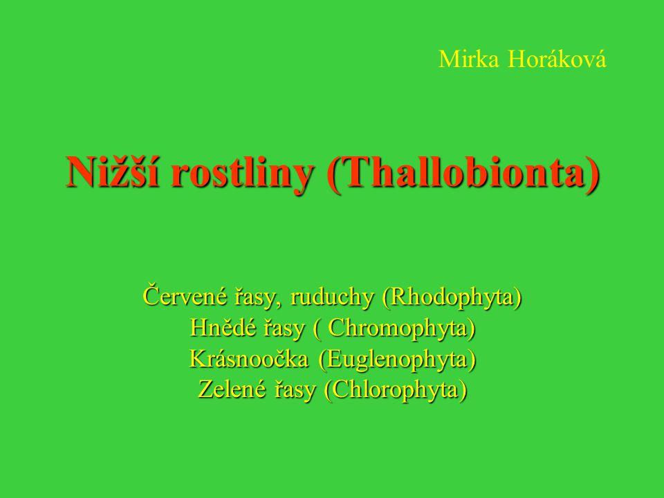 Nižší rostliny (Thallobionta) Červené řasy, ruduchy (Rhodophyta) Hnědé řasy ( Chromophyta) Krásnoočka (Euglenophyta) Zelené řasy (Chlorophyta) Mirka H