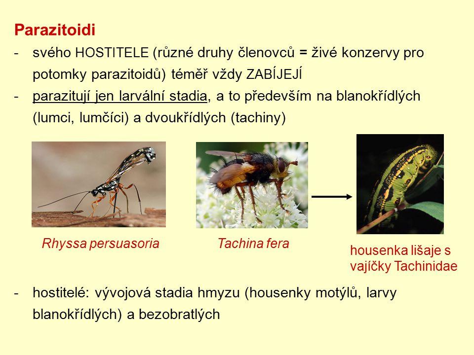 Parazitoidi -svého HOSTITELE (různé druhy členovců = živé konzervy pro potomky parazitoidů) téměř vždy ZABÍJEJÍ -parazitují jen larvální stadia, a to