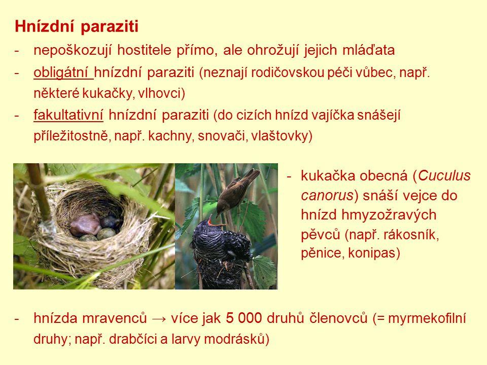 Hnízdní paraziti -nepoškozují hostitele přímo, ale ohrožují jejich mláďata -obligátní hnízdní paraziti (neznají rodičovskou péči vůbec, např. některé