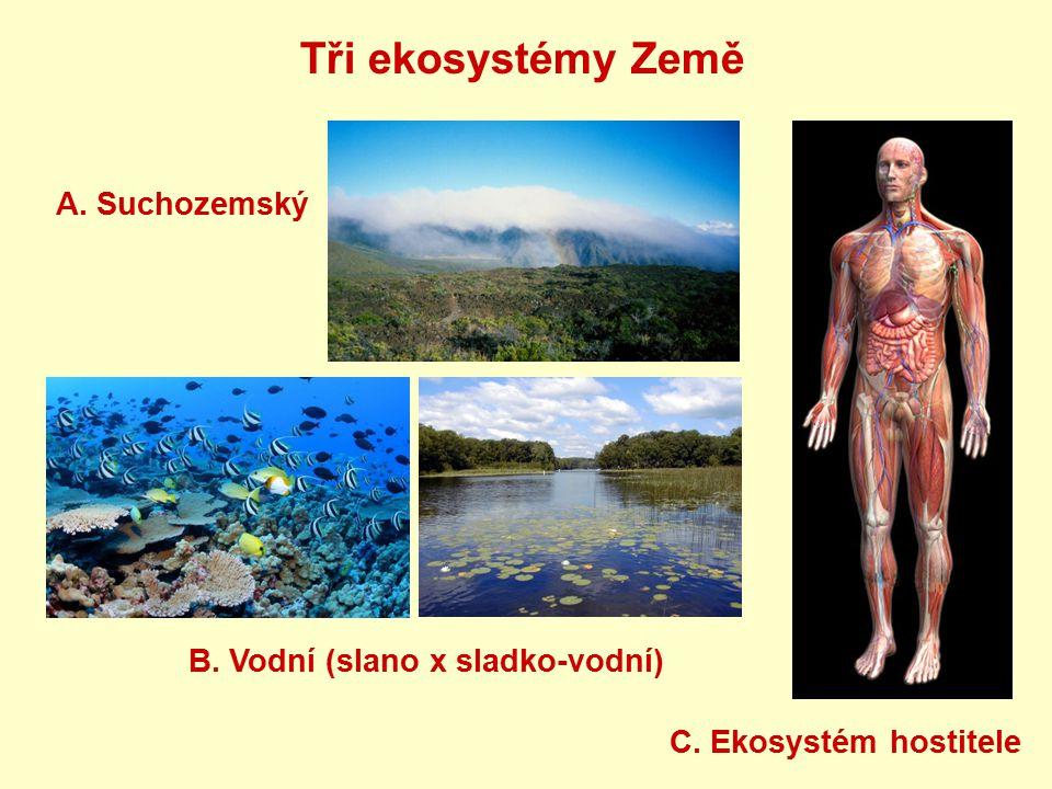 Tři ekosystémy Země A. Suchozemský B. Vodní (slano x sladko-vodní) C. Ekosystém hostitele