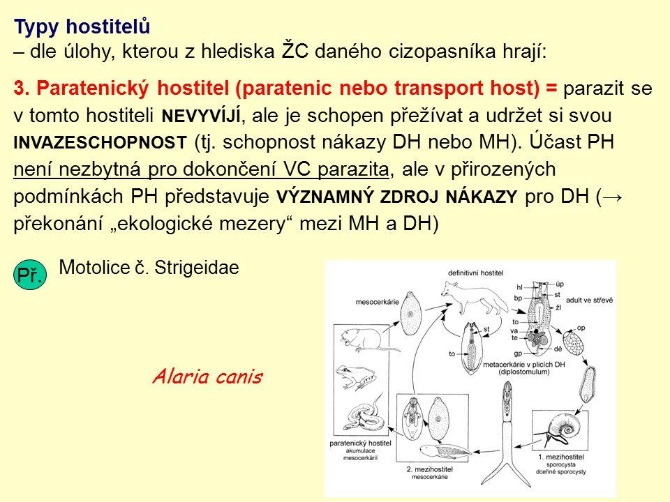 Typy hostitelů – dle úlohy, kterou z hlediska ŽC daného cizopasníka hrají: 3. Paratenický hostitel (paratenic nebo transport host) = parazit se v tomt