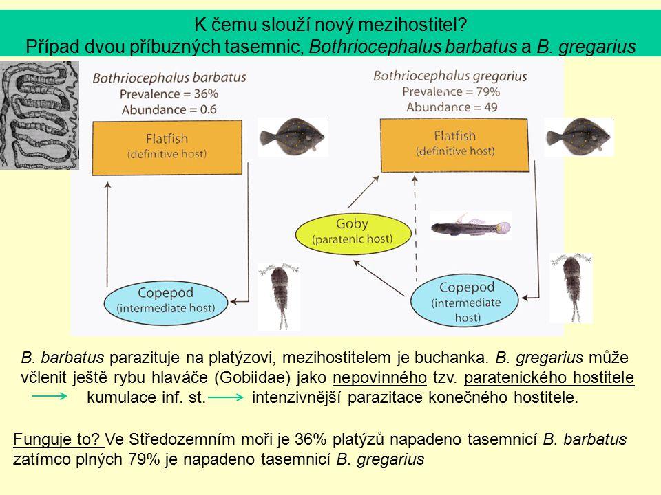 K čemu slouží nový mezihostitel? Případ dvou příbuzných tasemnic, Bothriocephalus barbatus a B. gregarius Funguje to? Ve Středozemním moři je 36% plat