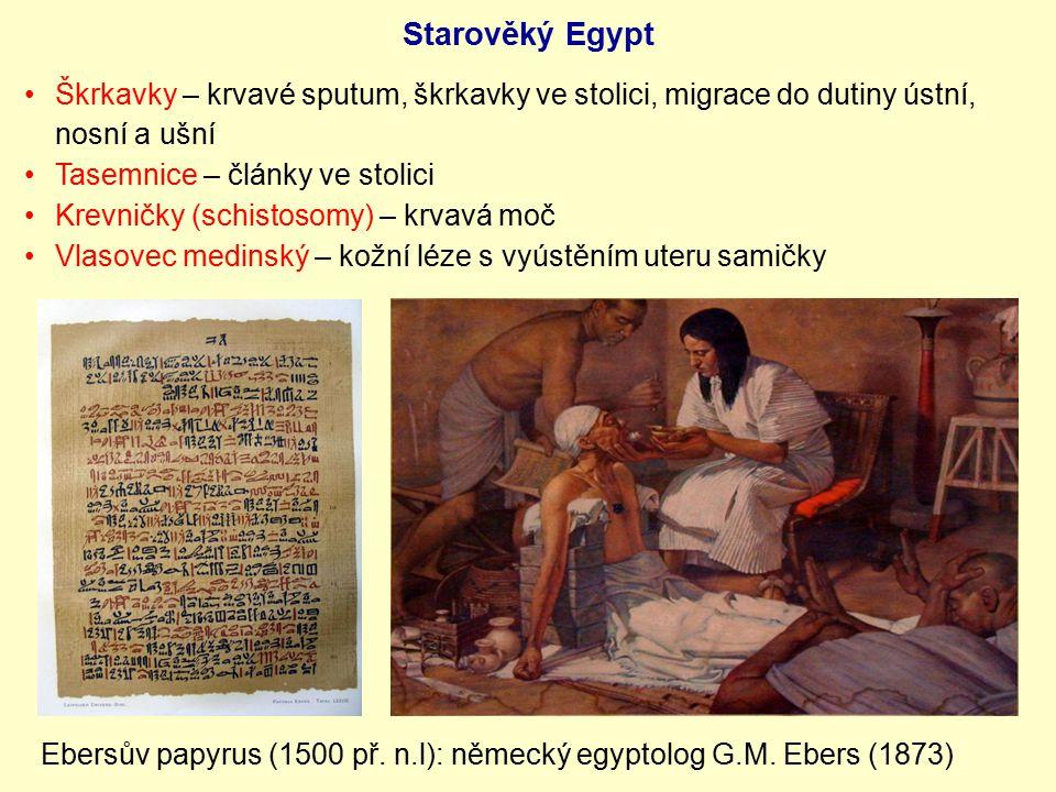 Ebersův papyrus (1500 př. n.l): německý egyptolog G.M. Ebers (1873) Škrkavky – krvavé sputum, škrkavky ve stolici, migrace do dutiny ústní, nosní a uš