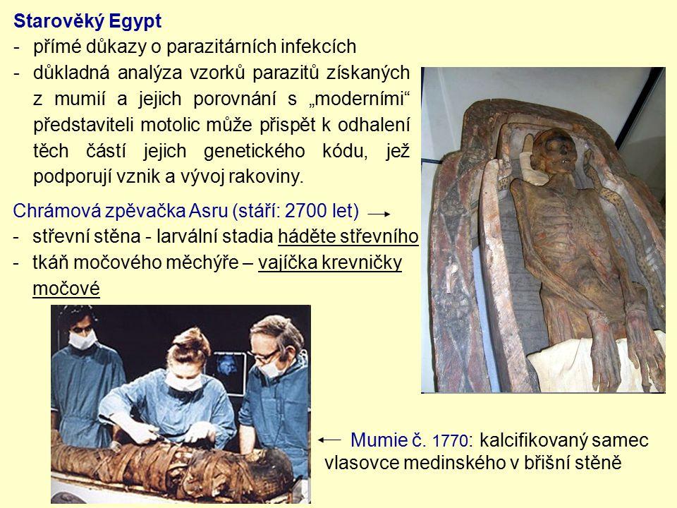 Chrámová zpěvačka Asru (stáří: 2700 let) -střevní stěna - larvální stadia háděte střevního -tkáň močového měchýře – vajíčka krevničky močové Starověký