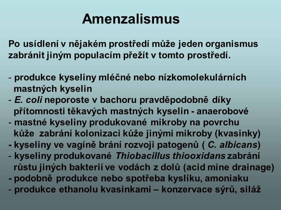 Amenzalismus Po usídlení v nějakém prostředí může jeden organismus zabránit jiným populacím přežít v tomto prostředí. - produkce kyseliny mléčné nebo