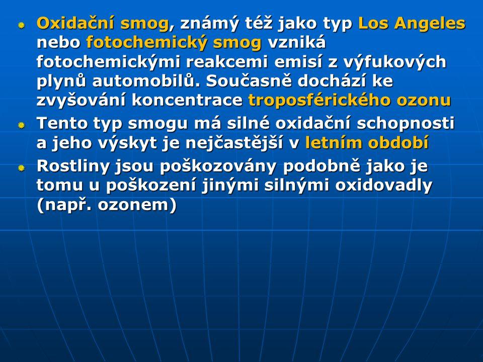 Oxidační smog, známý též jako typ Los Angeles nebo fotochemický smog vzniká fotochemickými reakcemi emisí z výfukových plynů automobilů. Současně doch