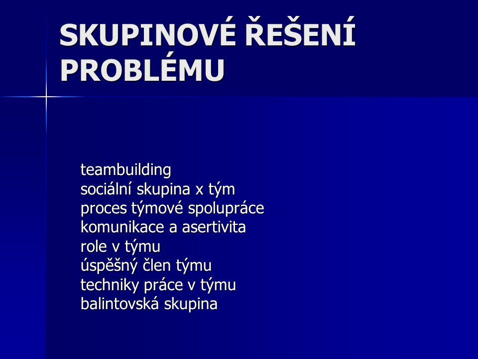 = budování efektivního týmu Teambuilding
