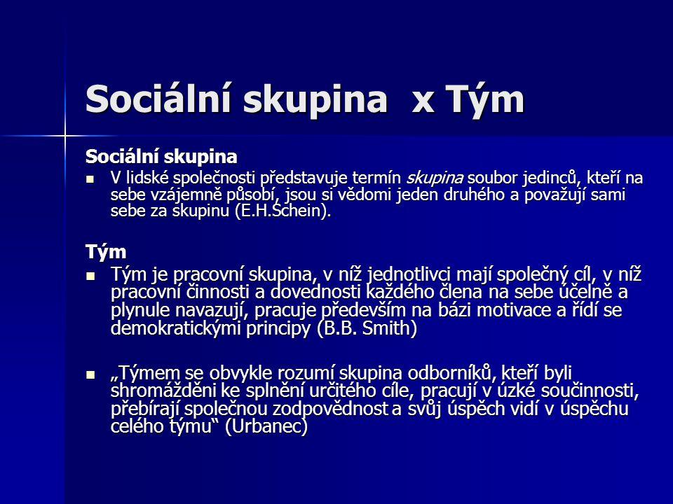 Sociální skupina x Tým Sociální skupina V lidské společnosti představuje termín skupina soubor jedinců, kteří na sebe vzájemně působí, jsou si vědomi