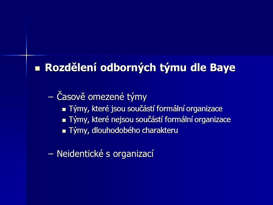 Rozdělení odborných týmu dle Baye Rozdělení odborných týmu dle Baye –Časově omezené týmy Týmy, které jsou součástí formální organizace Týmy, které jso