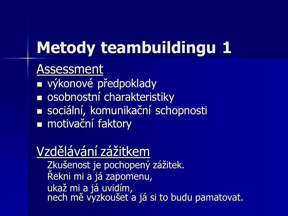 Motivace týmu Co motivuje členy týmu.Co motivuje členy týmu.