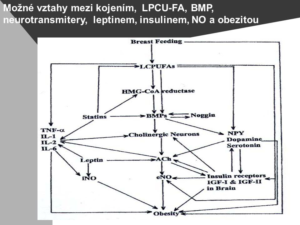 Možné vztahy mezi kojením, LPCU-FA, BMP, neurotransmitery, leptinem, insulinem, NO a obezitou