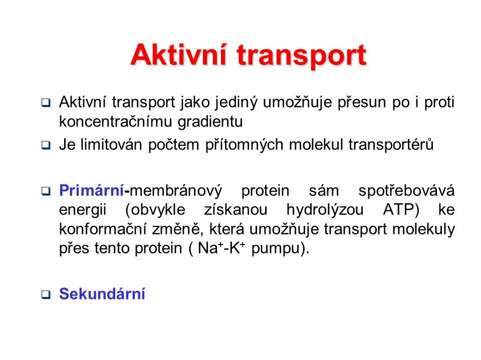 Aktivní transport  Aktivní transport jako jediný umožňuje přesun po i proti koncentračnímu gradientu  Je limitován počtem přítomných molekul transpo
