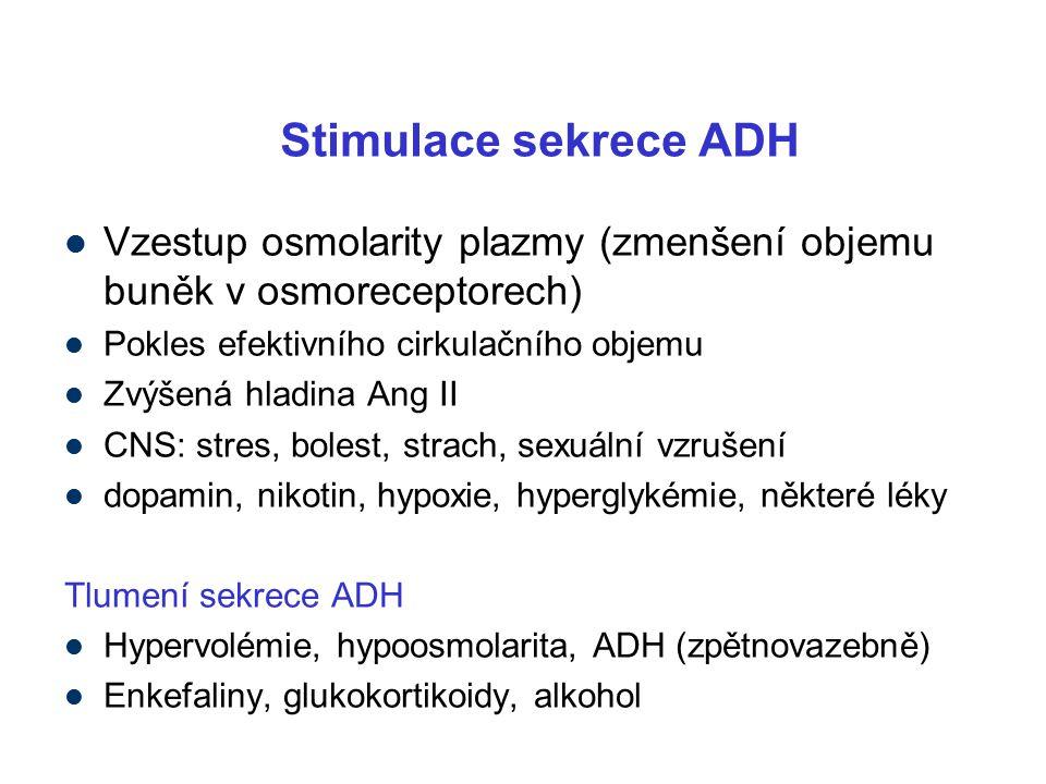 Stimulace sekrece ADH Vzestup osmolarity plazmy (zmenšení objemu buněk v osmoreceptorech) Pokles efektivního cirkulačního objemu Zvýšená hladina Ang II CNS: stres, bolest, strach, sexuální vzrušení dopamin, nikotin, hypoxie, hyperglykémie, některé léky Tlumení sekrece ADH Hypervolémie, hypoosmolarita, ADH (zpětnovazebně) Enkefaliny, glukokortikoidy, alkohol