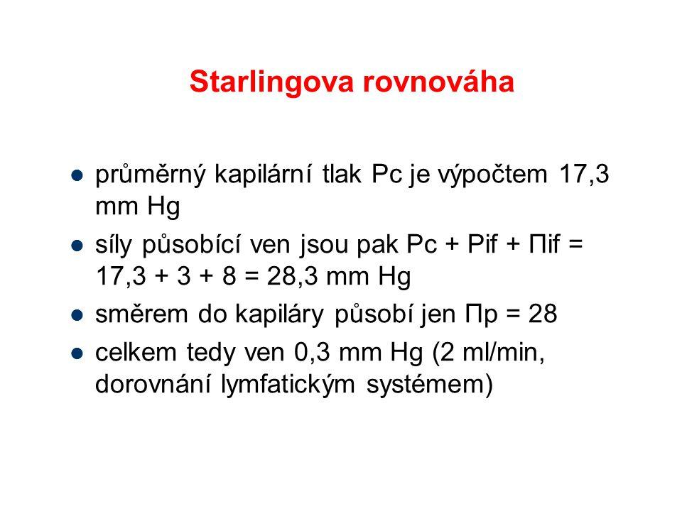 Starlingova rovnováha průměrný kapilární tlak Pc je výpočtem 17,3 mm Hg síly působící ven jsou pak Pc + Pif + Πif = 17,3 + 3 + 8 = 28,3 mm Hg směrem do kapiláry působí jen Πp = 28 celkem tedy ven 0,3 mm Hg (2 ml/min, dorovnání lymfatickým systémem)