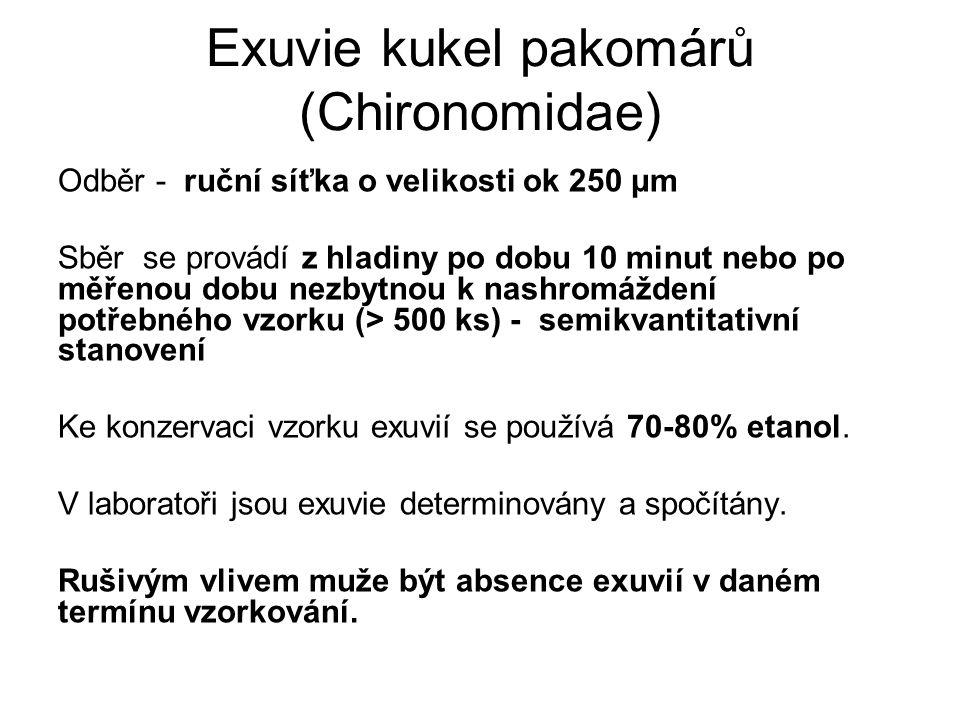 Exuvie kukel pakomárů (Chironomidae) Odběr - ruční síťka o velikosti ok 250 μm Sběr se provádí z hladiny po dobu 10 minut nebo po měřenou dobu nezbytn