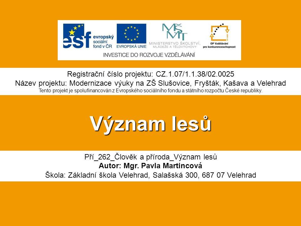 Význam lesů Pří_262_Člověk a příroda_Význam lesů Autor: Mgr.