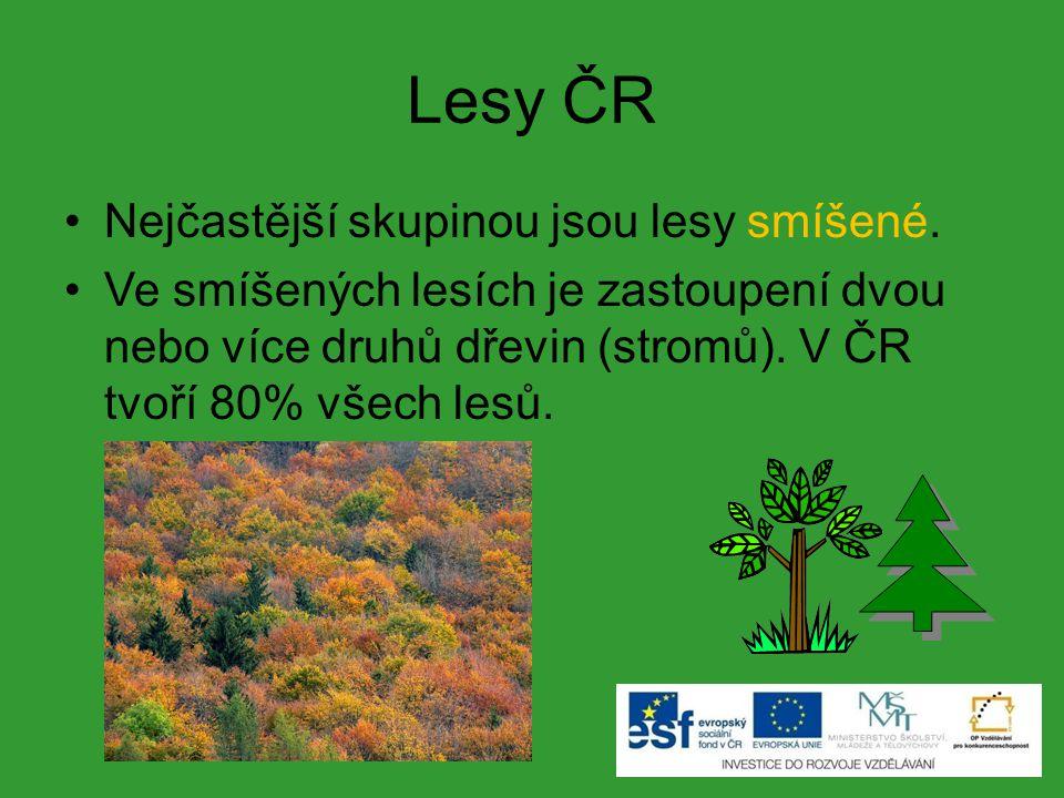 Lesy ČR Nejčastější skupinou jsou lesy smíšené.