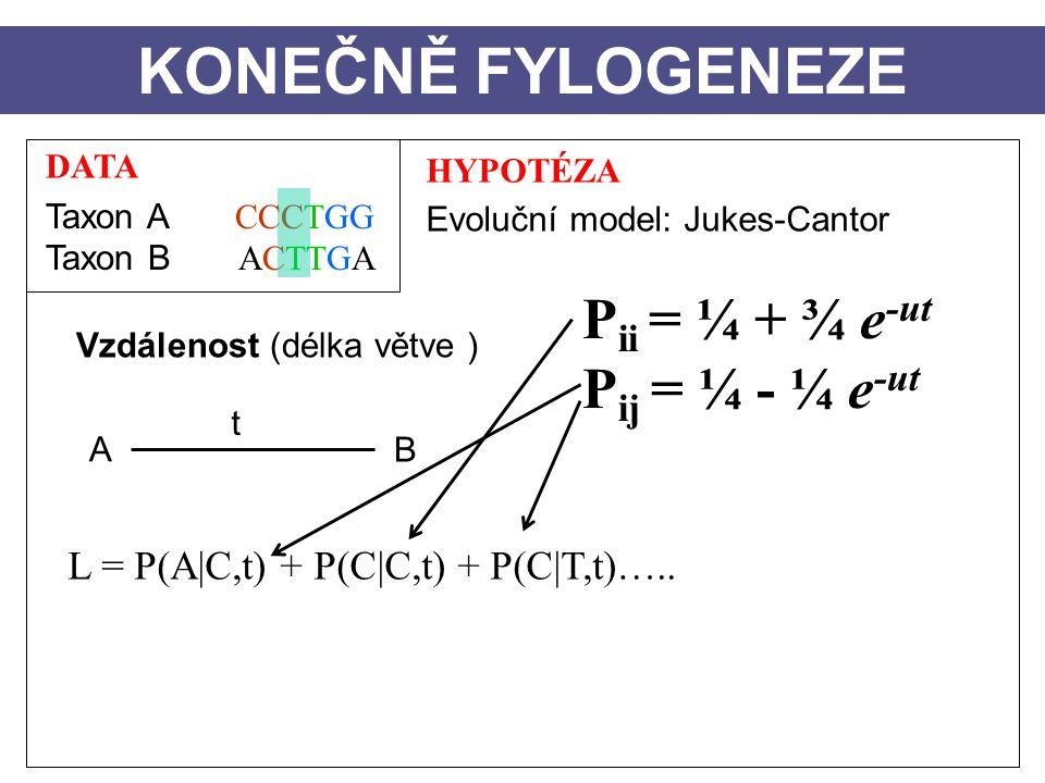 DATA Taxon A CCCTGG Taxon B ACTTGA HYPOTÉZA Evoluční model: Jukes-Cantor Vzdálenost (délka větve ) A B t KONEČNĚ FYLOGENEZE L = P(A|C,t) + P(C|C,t) + P(C|T,t)…..