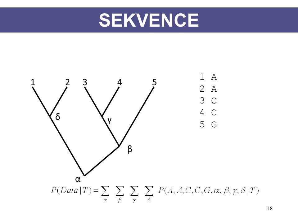 18 12345 1 A 2 A 3 C 4 C 5 G γ β δ α SEKVENCE