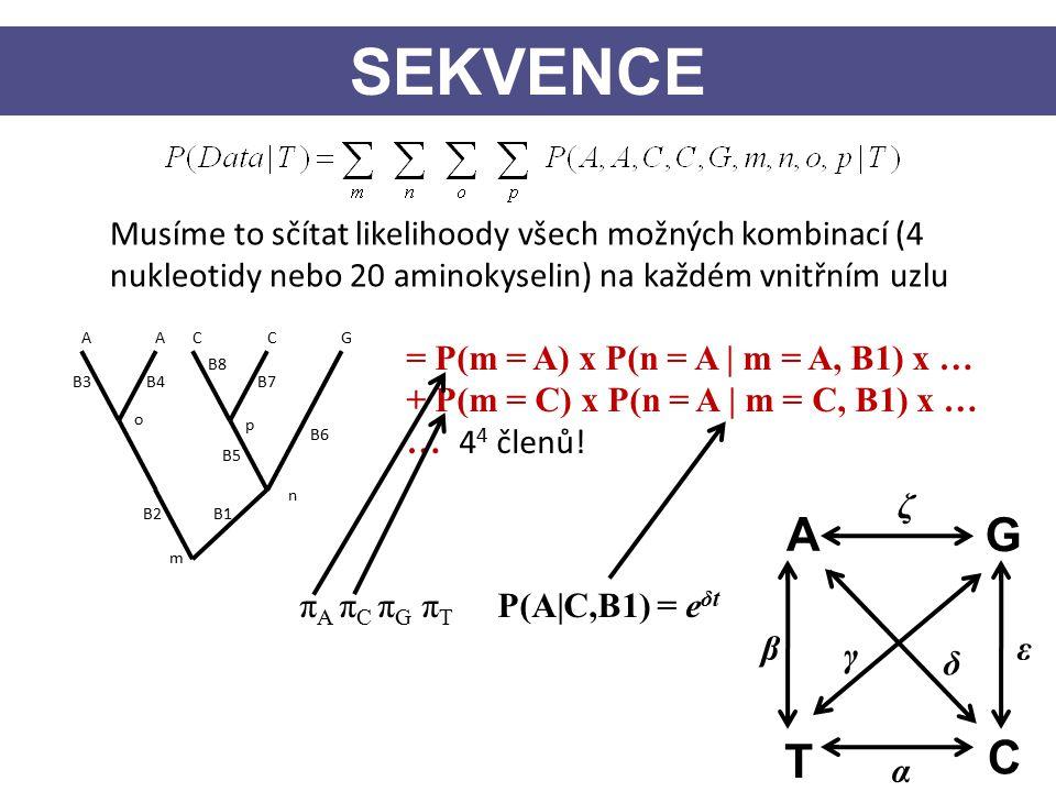 Musíme to sčítat likelihoody všech možných kombinací (4 nukleotidy nebo 20 aminokyselin) na každém vnitřním uzlu AACCG p n o m = P(m = A) x P(n = A | m = A, B1) x … + P(m = C) x P(n = A | m = C, B1) x … … 4 4 členů.