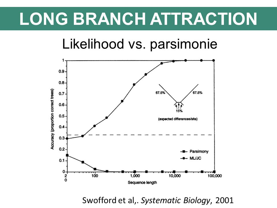 Likelihood vs. parsimonie Swofford et al,. Systematic Biology, 2001 LONG BRANCH ATTRACTION