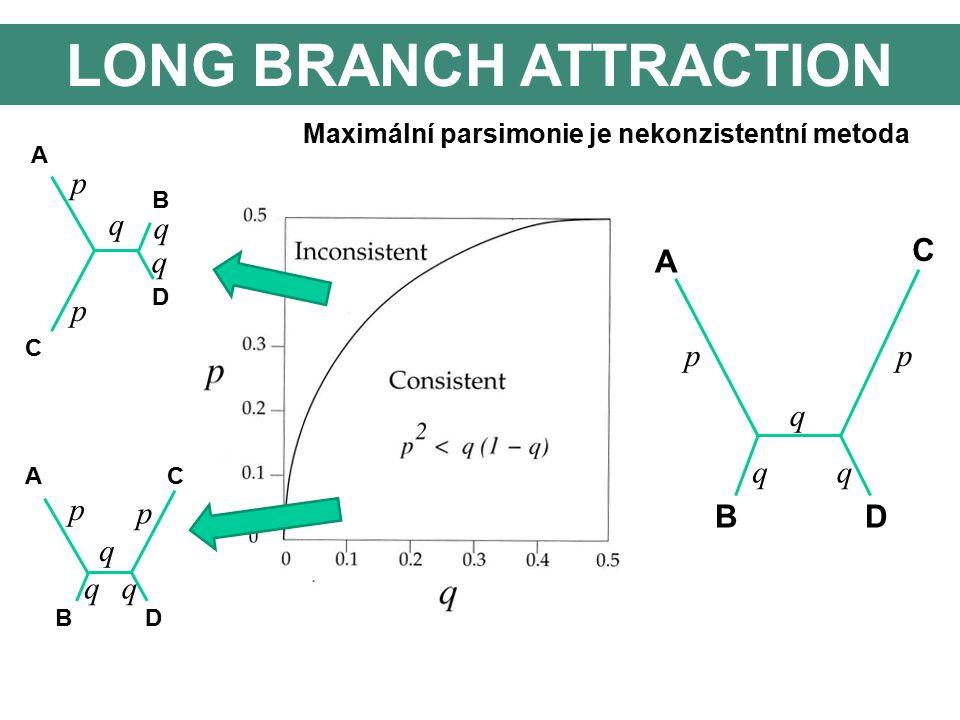 LONG BRANCH ATTRACTION A C B D AC BD p p p p q q q q qq Maximální parsimonie je nekonzistentní metoda pp q qq A C BD