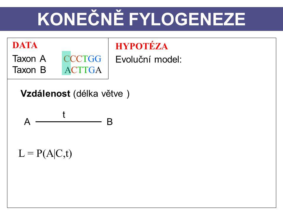 DATA Taxon A CCCTGG Taxon B ACTTGA HYPOTÉZA Evoluční model: Vzdálenost (délka větve ) A B t KONEČNĚ FYLOGENEZE L = P(A|C,t)