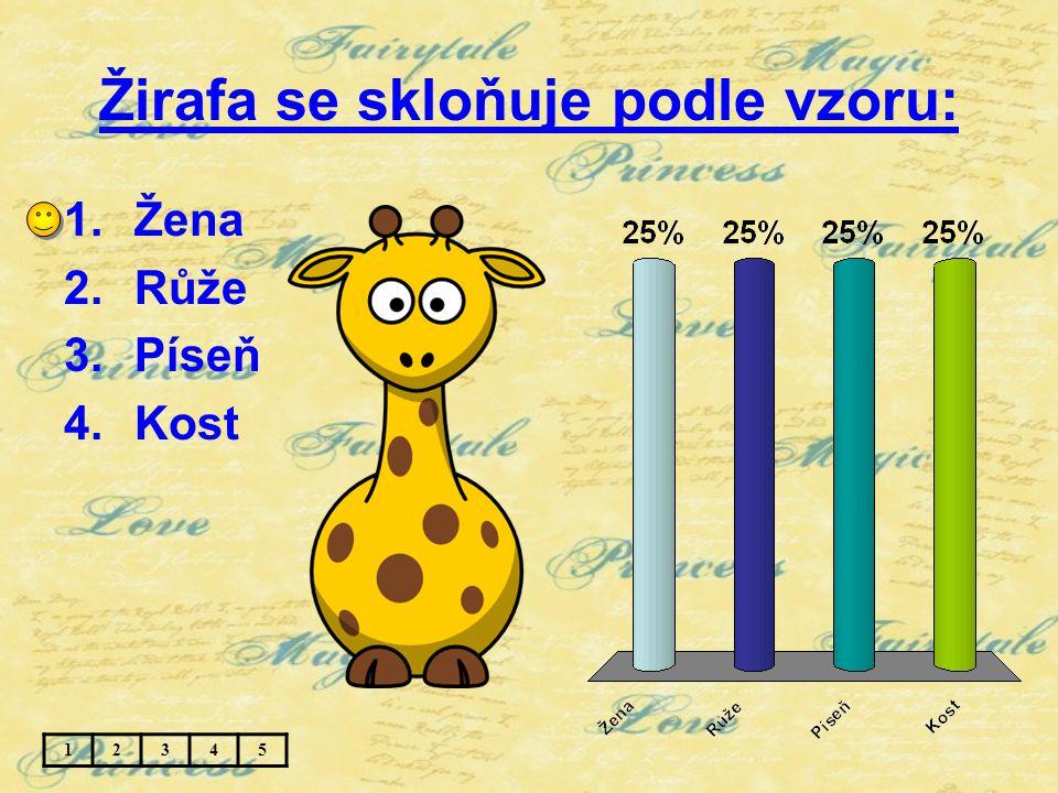 Žirafa se skloňuje podle vzoru: 1.Žena 2.Růže 3.Píseň 4.Kost 12345