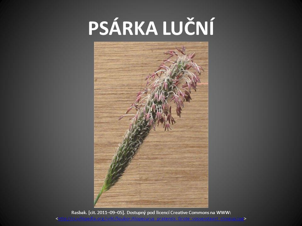 PSÁRKA LUČNÍ Rasbak. [cit. 2011–09–05]. Dostupný pod licencí Creative Commons na WWW: http://cs.wikipedia.org/wiki/Soubor:Alopecurus_pratensis_Grote_v