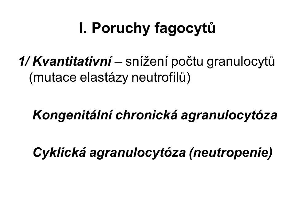 I. Poruchy fagocytů 1/ Kvantitativní – snížení počtu granulocytů (mutace elastázy neutrofilů) Kongenitální chronická agranulocytóza Cyklická agranuloc