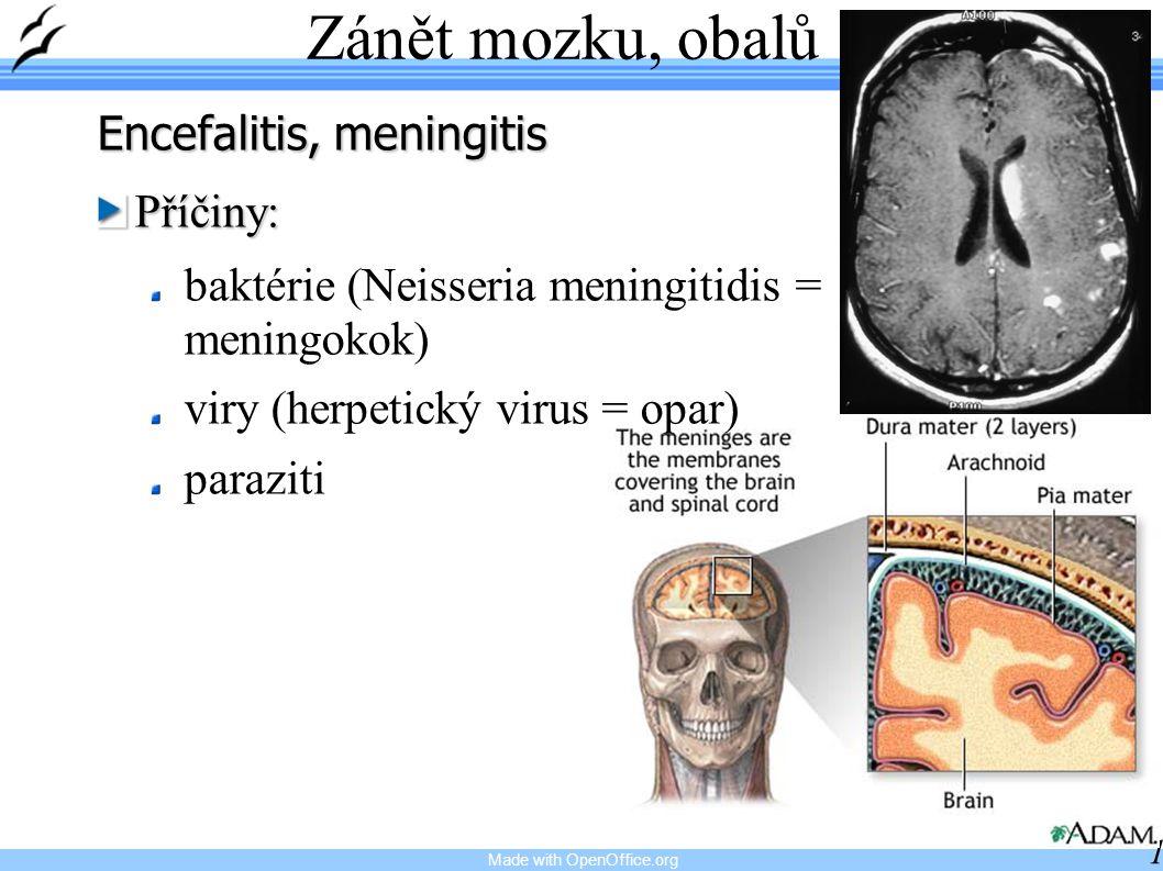 Made with OpenOffice.org 16 Zánět mozku, obalů Encefalitis, meningitis Příčiny: baktérie (Neisseria meningitidis = meningokok) viry (herpetický virus