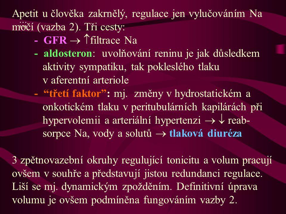 ;;; Apetit u člověka zakrnělý, regulace jen vylučováním Na močí (vazba 2).