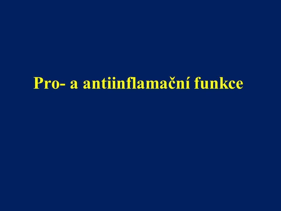 Pro- a antiinflamační funkce
