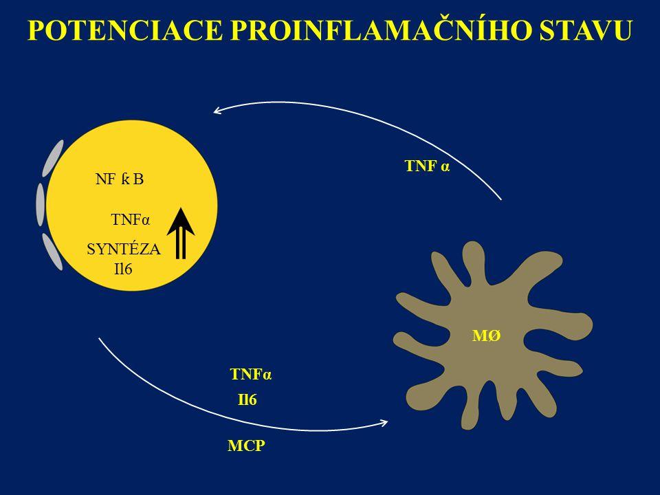 POTENCIACE PROINFLAMAČNÍHO STAVU MØ SYNTÉZA Il6 TNFα MCP TNF α Il6 NF ƙ B