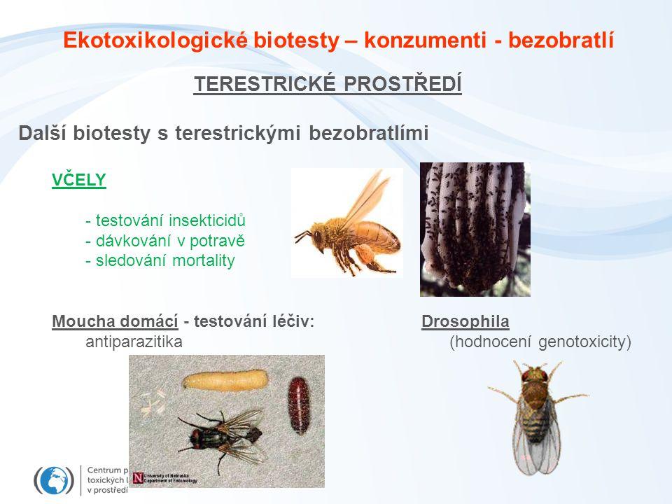 TERESTRICKÉ PROSTŘEDÍ Další biotesty s terestrickými bezobratlími VČELY - testování insekticidů - dávkování v potravě - sledování mortality Moucha domácí - testování léčiv: Drosophila antiparazitika (hodnocení genotoxicity) Ekotoxikologické biotesty – konzumenti - bezobratlí