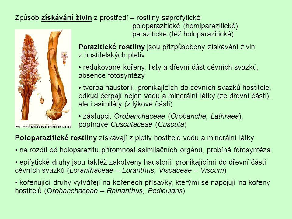 """Určitou formou parazitismu je i čerpání živin od mykorhizních partnerů monotropoidní mykorhiza (Monotropaceae) – """"zprostředkovaný parazitismus prostřednictvím hub, jež čerpají živiny od ektomykorhizních partnerů orchideová mykorhiza (Orchidaceae) – v rané fázi vývoje je rostlina závislá na přísunu živin od houby; u nezelených orchidejí tento stav přetrvá celý život Specifický způsob získávání živin mají masožravé rostliny nejde o získávání vody a základních živin (minerálních látek, asimilátů – tyto rostliny jsou normálně zelené a fotosyntetizující), ale o """"doplňkovou výživu z živočišných těl tyto jinak autotrofní rostliny získávají zejména bílkoviny rostliny hmyzožravé vytvářejí různé typy lapacích zařízení (viz přeměny listu) dvojí typ žlázek na listech => produkce látek ke dvěma účelům – lepkavé výměšky (např."""