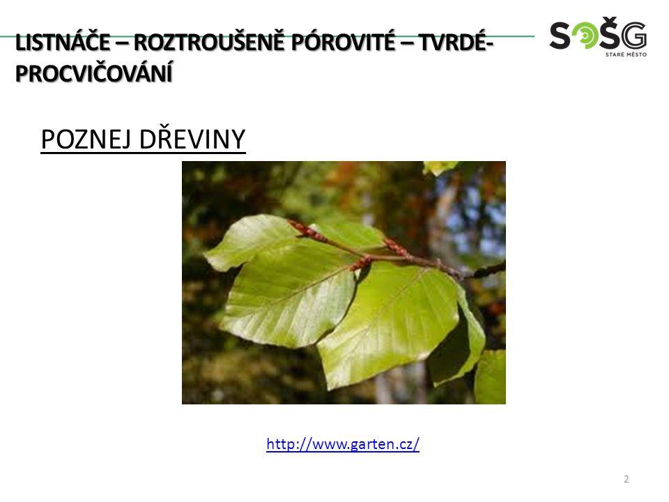 POZNEJ DŘEVINY 2 http://www.garten.cz/