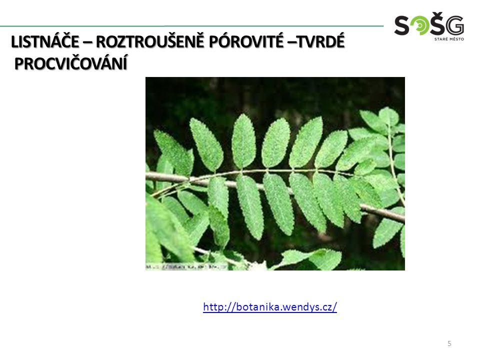 LISTNÁČE – ROZTROUŠENĚ PÓROVITÉ –TVRDÉ PROCVIČOVÁNÍ PROCVIČOVÁNÍ 5 http://botanika.wendys.cz/