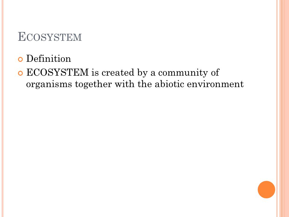 DIVISION OF ECOSYSTEMS water – a pond, a river, the sea etc..