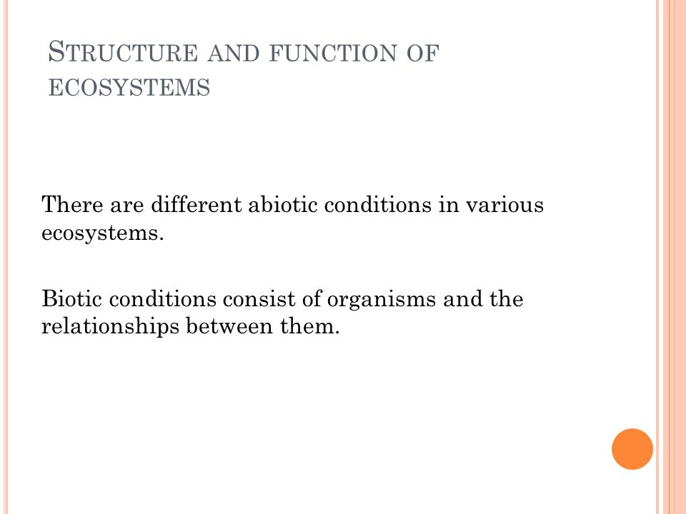 F UNCTION OF ORGANISMS IN THE ECOSYSTEMS Different functions of organisms in an ecosystem – there are: Producers Consumers Decomposers