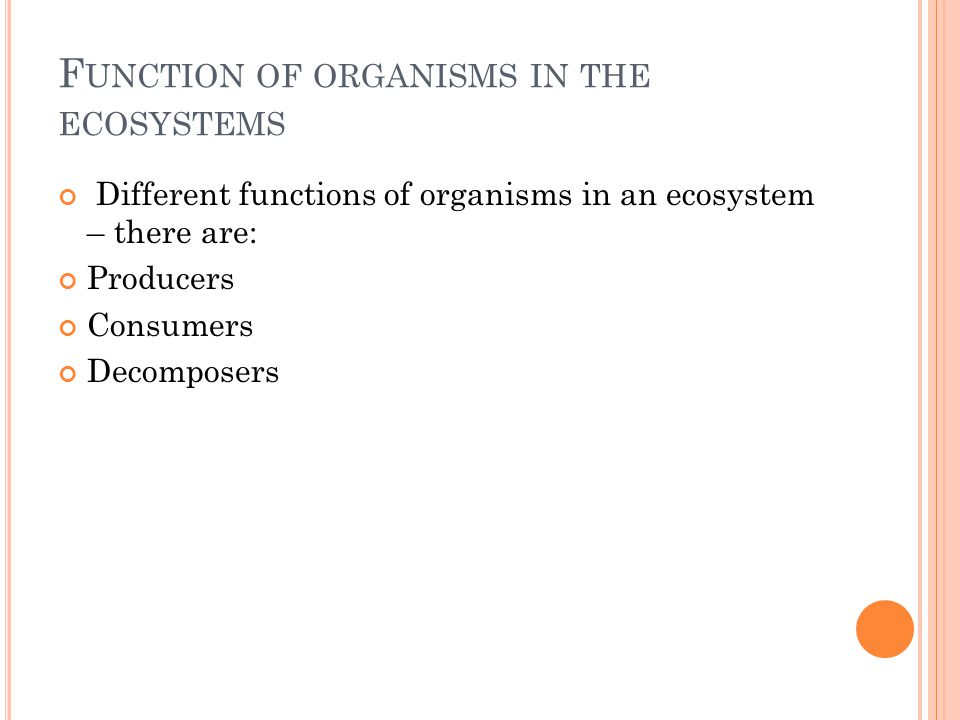 L IFE IN ECOSYSTEM There is a transformation of matter and energy in any ecosystem.