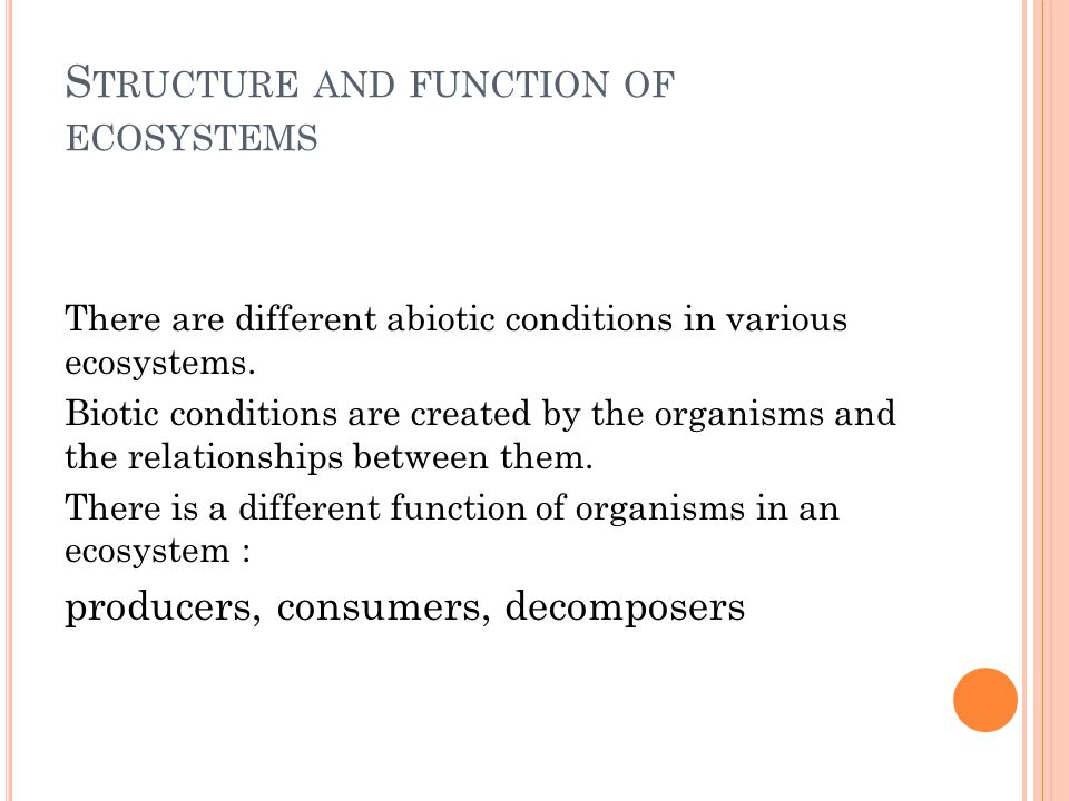 E COSYSTEM AND LIFE In every ecosystem there is a conversion and transfer of energy and other substances.
