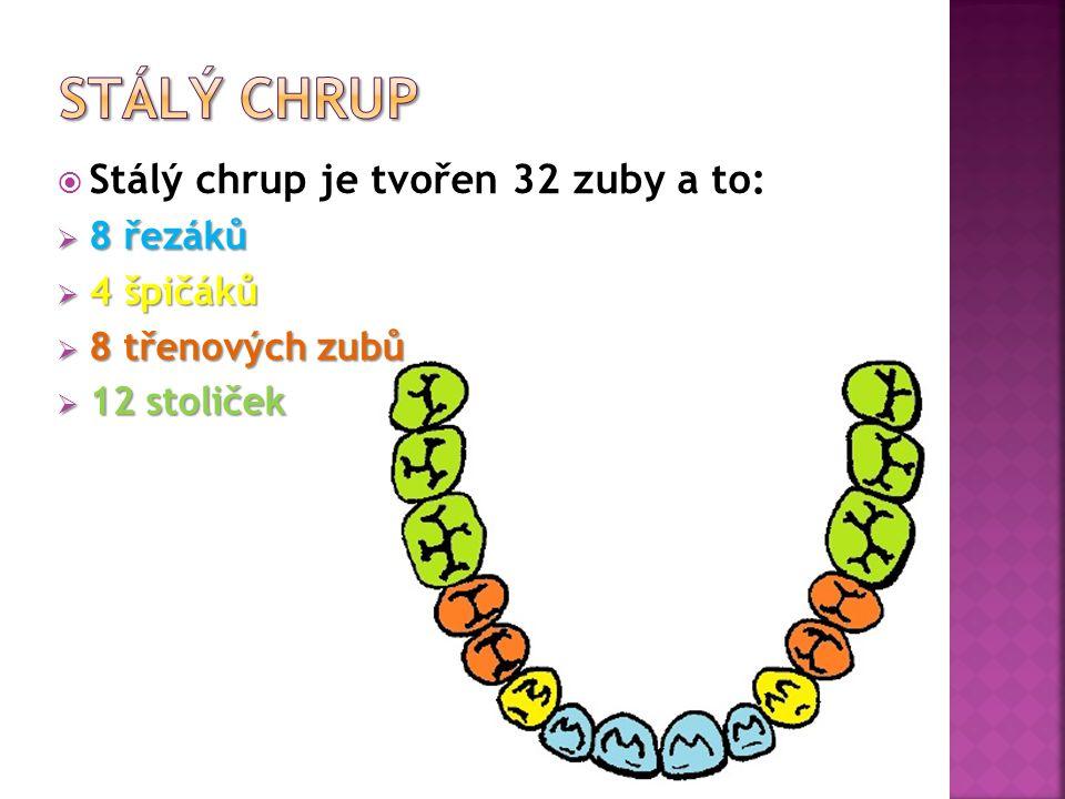 Mléčný chrup se skládá ze 20 zubů. A to z: 8 řezáků 4 špičáků 8 stoliček