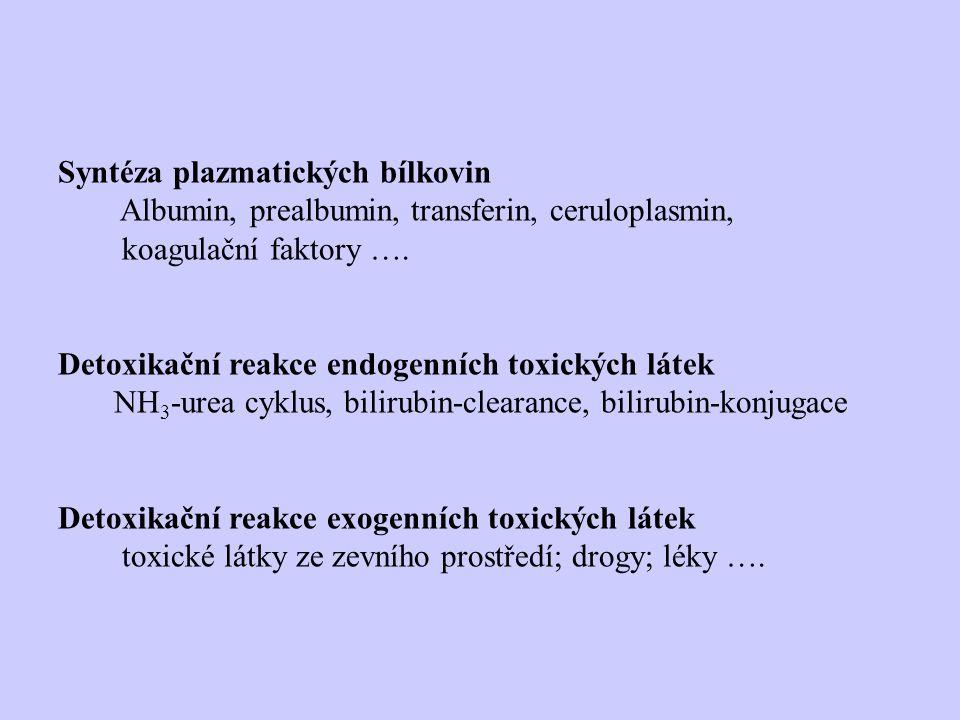 Syntéza plazmatických bílkovin Albumin, prealbumin, transferin, ceruloplasmin, koagulační faktory ….