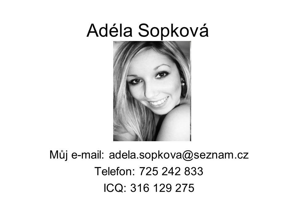 Adéla Sopková Můj e-mail: adela.sopkova@seznam.cz Telefon: 725 242 833 ICQ: 316 129 275